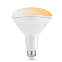 LOHAS LED Smart Bulb Work with Alexa and Google Home, Warm and White Color, BR40 E26 15W 2000-6500K Dimmable