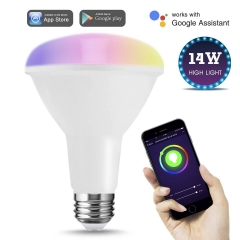 LOHAS LED Smart Bulb Work with Alexa and Google Home, Recessed Floor Light, BR30 Dimmable